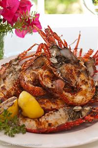 blanchards crayfish
